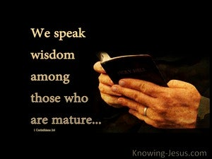 1 Corinthians 2:6 Speaking Wisdom Among The Mature (beige)