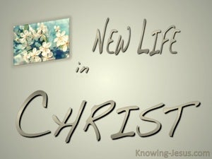 2 Corinthians 5:17 New Life In Christ beige