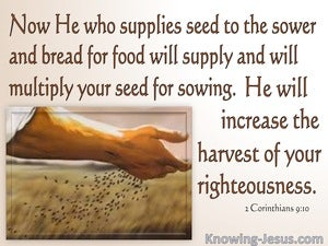 2 Corinthians 9:10 The Lord Supplies Seed. He Multiplies Your Sowing (pink)