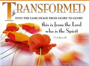 2 Corinthians 3:18 Transformed From Glory To Glory (orange)
