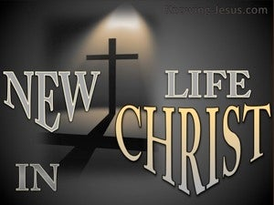 New Life In Christ (devotional) (gray) - 2 Corinthians 5:17