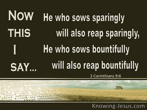 2 Corinthians 9:6 He Who Sows Sparingly Will Reap Sparingly (brown)
