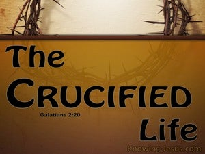 Galatians 2:20 Crucified With Christ beige