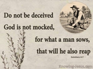 Galatians 6:7 What An Man Sows He Will Reap (beige)
