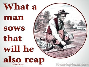 Galatians 6:7 What An Man Sows He Will Reap red