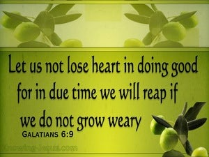 Galatians 6:9 Don't Grow Weary Of Doing Good (green)
