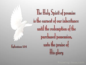 Ephesians 1:14 The Holy Spirit Of Promise (red)