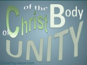 Ephesians 4:13 Unity Of The Body gray