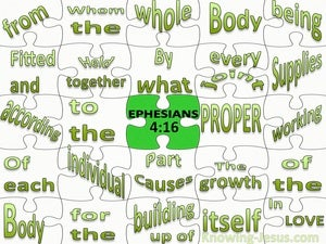 Ephesians 4:16 The Body Fitted And Held Together (black)