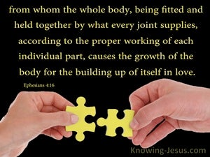 Ephesians 4:16 The Body Fitted And Held Together yellow
