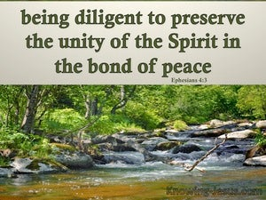Ephesians 4:3 The Unity Of The Spirit green
