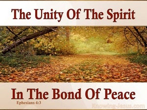 Ephesians 4:3 The Unity Of The Spirit orange