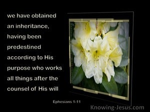 Ephesians 1:11 we have obtained an inheritance A Duel Heritage (devotional) (black)