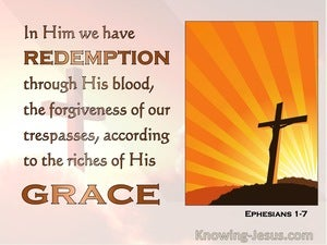 Ephesians 1:7 In Whom We Have The Forgiveness Of Sins (orange)