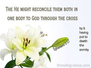 Ephesians 2:17 He Came and Preached Peace (white)