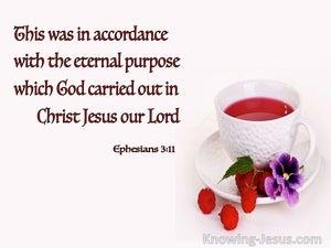 Ephesians 3:11 The Eternal Purpose Of God (white)
