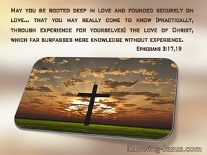 Ephesians 3:17 May You Be Rooted Deep In Love (windows)11:23