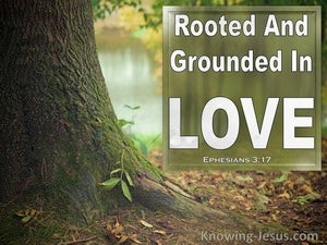 Ephesians 3:17 Rooted And Grounded In Love (brown)