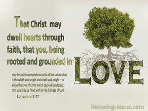 Ephesians 3:17 That Christ May Dwell In Your hearts Through Faith  Rooted And Grounded In Love (gray)
