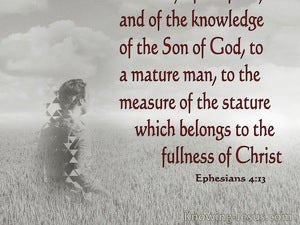Ephesians 4:13 The Unity Of The Faith (gray)