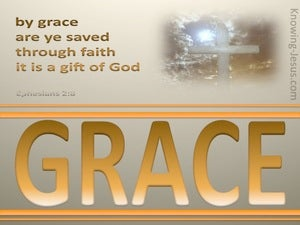 Salvation By Grace Through Faith (devotional) (gold) - Ephesians 2:8