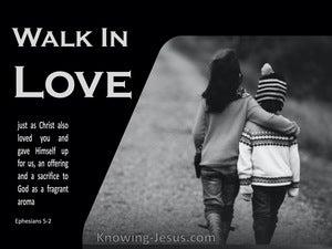 Ephesians 5:2 Walk In Love (gray)