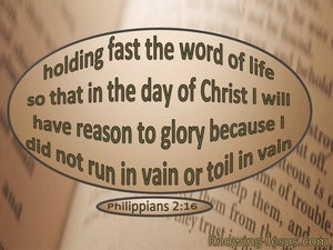 Philippians 2:16 Hold Fast The Word Of Life beige