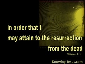 Philippians 3:11 Attain To The Resurrection Of The Dead black