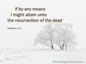 Philippians 3:11 Attain To The Resurrection Of The Dead white