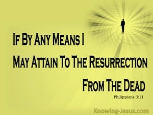 Philippians 3:11 Attain To The Resurrection Of The Dead yellow