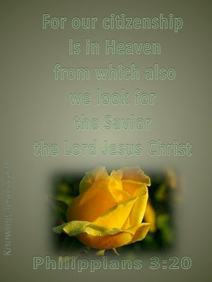 Philippians 3:20 Our Citizenship Is In Heaven yellow