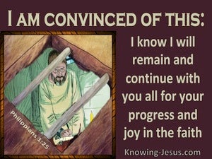Philippians 1:25 Paul Will Continue For Their Progress And Joy (brown)