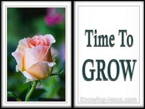 Time To Grow (devotional)