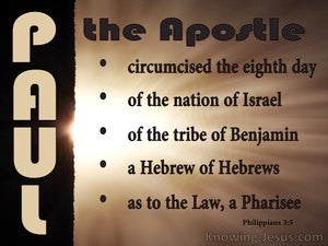 Philippians 3:5 Paul The Apostle (brown)
