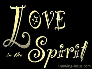 Colossians 1:8 Informed Of Your Love In The Spirit (black)