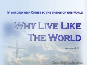 Colossians 2:20 You Died With Christ To The Things Of The World (blue)