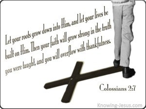 Colossians 2:7 Rooted In Christ (white)
