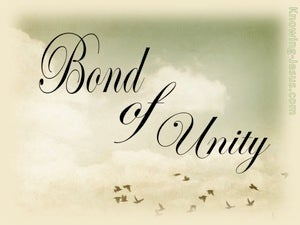 Colossians 3:14 Bond Of Unity sage