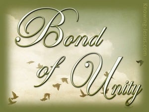 Bond of Unity devotional - Colossians 3:14