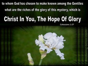 Colossians 1:18 The Hope of Glory (devotional)11:15 (green)