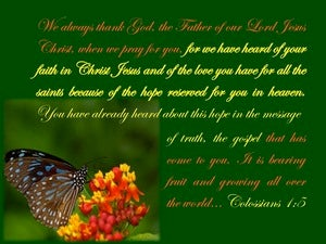 Colossians 1:5 Hope Reserved In Heaven (green)