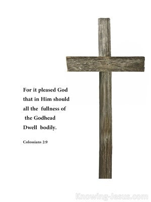 His Work (devotional) (white) - Colossians 2:9