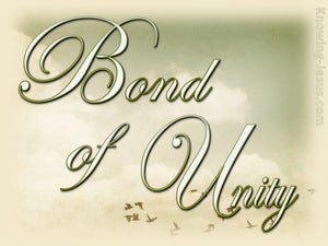 Colossians 3:14 Bond of Unity (devotional):12:19 (sage)