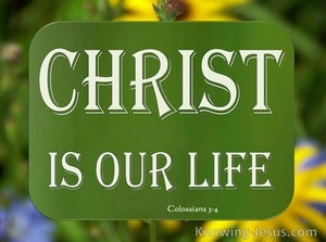 Colossians 3:4 Christ Our Life (sage)