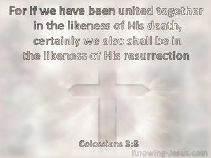 Colossians 3:8 United In The Likenss Of His Death And Also In The Likenss Of His Resurrection (pink)