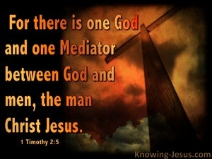 1 Timothy 2:5 One Mediator Between God And Man brown