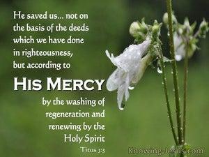 Titus 3:5 He Saved Us (green)