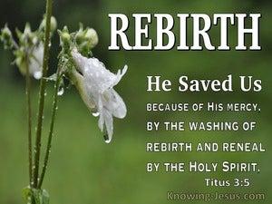 Titus 3:5 He Saved Us (white)