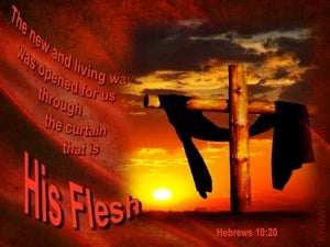 Hebrews 10:20 The Curtain That Is His Flesh red