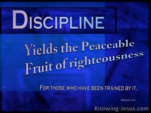 Hebrews 12:11 Discipline Yields The Fruit Of Righteousness blue